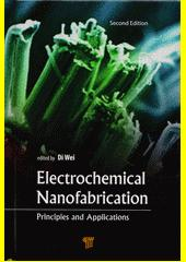 Cover: Electrochemical nanofabrication : principles and applications